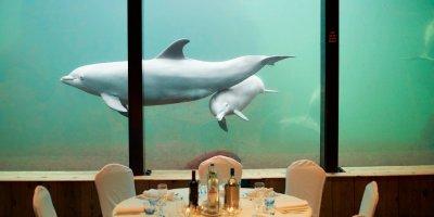 Afbeelding bij Eten en drinken voor groepen en zakelijke gasten