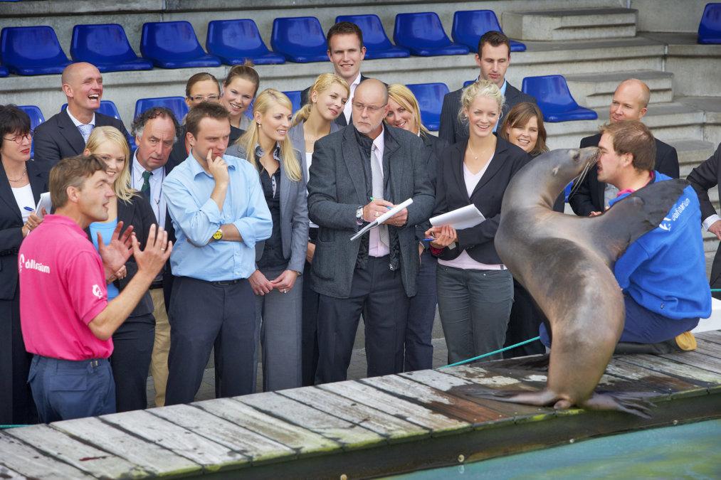 bedrijfsuitje bij zeeleeuwen